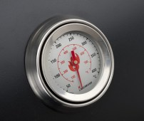 31420_thermometer